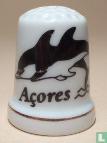 Azoren-San Miguel (P)