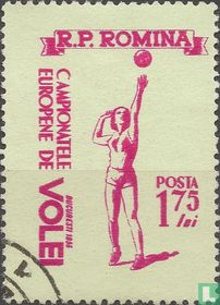 Europees volleybalkampioenschap
