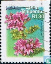 Flora en Fauna (Tshipembe)