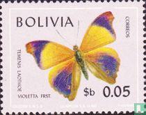 Bolivia 1970
