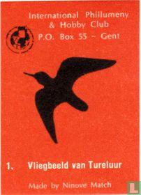 Vliegbeeld van Tureluur