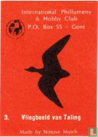 Vliegbeeld van Taling
