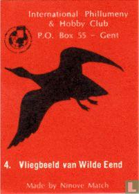 Vliegbeeld van Wilde Eend