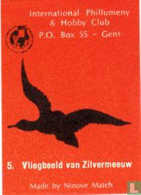 Vliegbeeld van Zilvermeeuw
