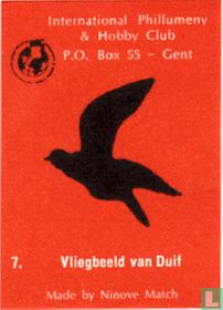 Vliegbeeld van Duif