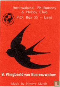 Vliegbeeld van Boerenzwaluw