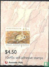 Bedreigde dieren - Boekje met 3 Koala's