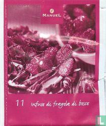 11 Infuso di fragola di bosco