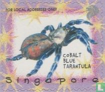 25 year Singapore Zoo