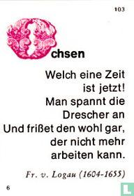 Ochsen