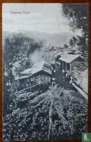 Kampong Tosari  - Sanatorium - Hoogst gelegen Herstellingsoord van Ned. Indie 6000 voet