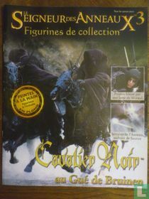 The Lord of the Rings: The black knight