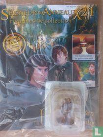 Lord of the Rings: Frodo en Sam
