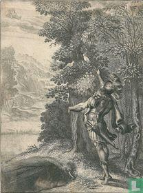 Twee duiven wijzen Aeneas de weg naar de gouden tak