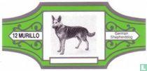 Honden HG (zilver)