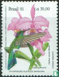 Hummingbirds and Orchids - Brapex`91