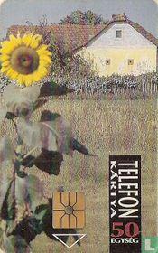 Farms on the Great Plain - Sunflower