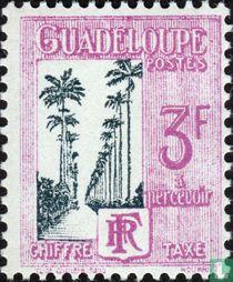 Palmenboulevard