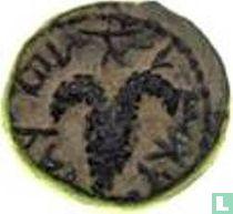 Judea  AE18  (Sjimon Bar Kochba, jaar 2) 133 - 134
