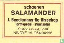 Schoenen Salamander - J. Beeckmans-De Bisschop