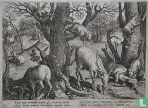 Lynx quae nonnullis Lupus est ceruarius, atrox