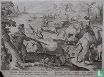 Horrida Barbariae regio nutrire Camelos