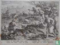 Vipera in Italiae gaudet latitare palude