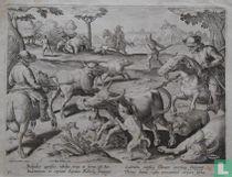 Bubalus agrestis, raribus, trux et ferus est Bos.