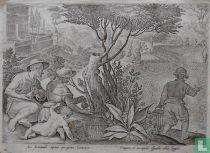 Sic Autumnali capitur peregrina Coturnix Tempore, et excipulis effundit sibila linguis.