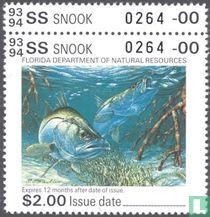 Florida 1993 - 1994