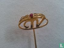 CNV goud met lauwertak en robijn