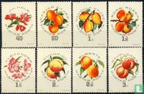 National apricots exhibition for sale