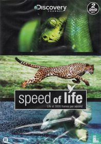 Speed of Live - Live at 3000 Frames per Second