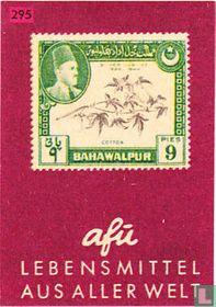 Lebensmittel aus aller Welt - Bahawalpur