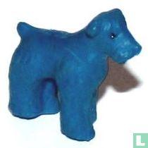 Fox blauw
