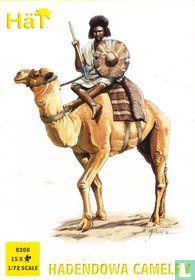 Hadendowa Camelry