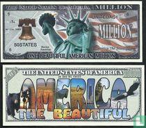 One Beuatifull America dollar bill