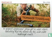 Australië - Tasmaanse tijgerslang