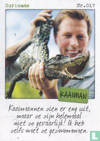 Suriname - Kaaiman