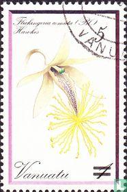 Orchideeën(overdruk)