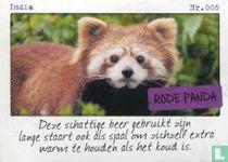 India - Rode panda