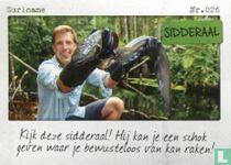Suriname - Sidderaal