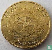 Afrique du Sud 1 pond 1893