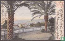 Un saluto da San Remo - Vue entre les Palmiers