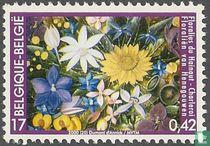Hainaut Flower Show