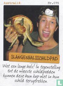 Australië - Slangenhalsschildpad