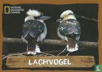 Lachvogel