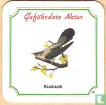 Kuckuck n°20