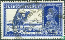 Camels Mail