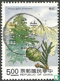 Naaldbomen cipressen